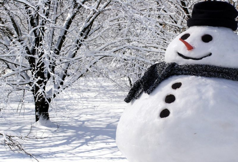 vitosha world snow day
